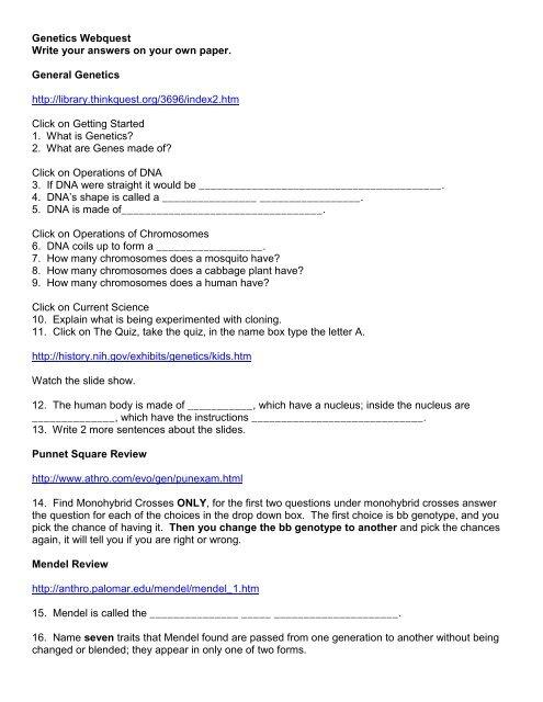 genetics webquest pdf