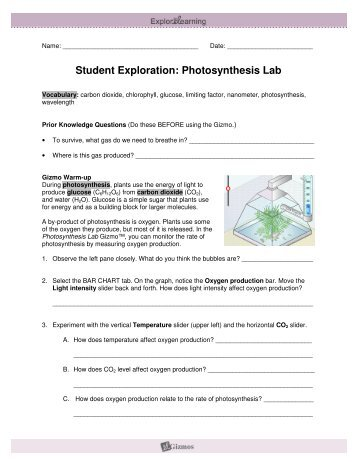 student exploration mineral identification gizmo answer key Student exploration: mineral identification vocabulary use the mineral key to identify minerals b through f submit your answers in the gizmo (use the.