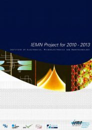 IEMN Project for 2010-2013