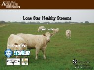 Beef - Lone Star Healthy Streams Program