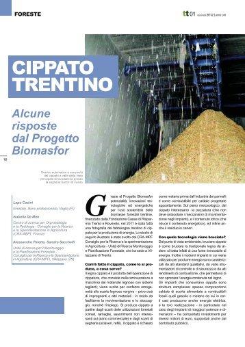 Articolo BIOMASFOR su Terra Trentina 1 2012 - Legno Trentino