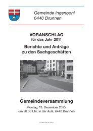 Voranschlag 2011 - Brunnen