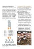 AnimAl And humAn WelfAre hAnd-in-hAnd - WSPA - Page 6