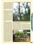 Bambus - Saxdorf.de - Seite 4