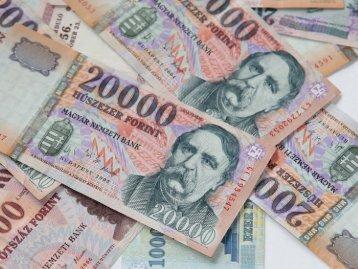 Pénz-egyesítési kísérletek, euró, pénzügyi krízis