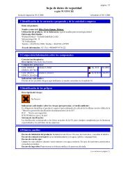 hoja de datos de seguridad - Wieland Dental