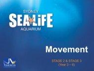 Movement - Sydney Aquarium