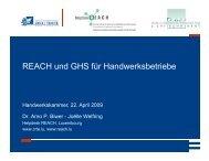 REACH und GHS für Handwerksbetriebe - Helpdesk REACH & CLP