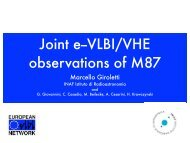 Joint e-VLBI/VHE observations of M87 - CIRA
