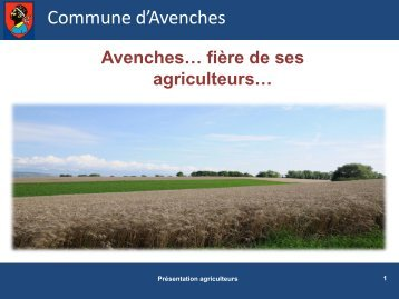 Commune d'Avenches - Commune Avenches