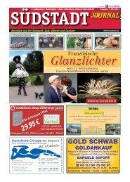 Südstadt Journal 06/2011 - LeineVision.