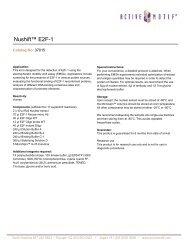 Nushift™ E2F-1 - Active Motif