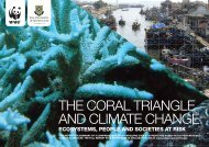 THE CORAL TRIANGLE AND CLIMATE CHANGE: - WWF
