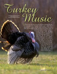 Turkey Music - New Hampshire Fish and Game Department