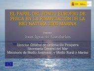 PRINCIPIOS RECTORES DEL FEP - WWF