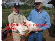 CHICKENS IN THE VEGETABLE GARDEN - Utah Pests
