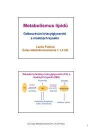 Metabolismus lipidů - Ústav lékařské chemie a biochemie