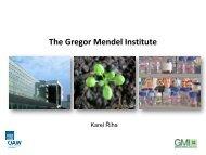 The Gregor Mendel Institute