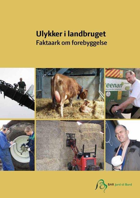 Ulykker i landbruget – Faktaark om forebyggelse - BAR - jord til bord.