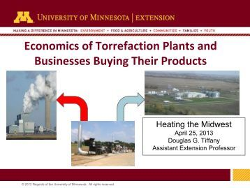 Economics of Torrefaction Plants and Co-located Businesses
