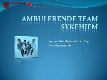 Ambulerende team sykehjem - Fredrikstad kommune