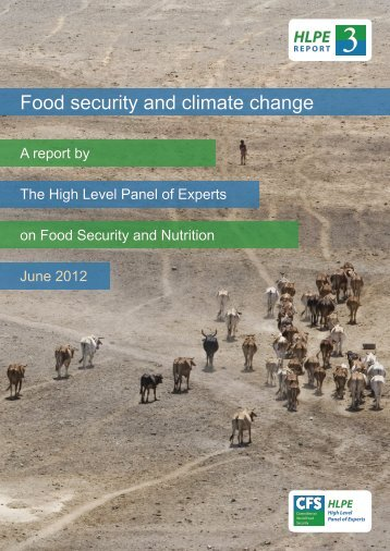 Food security and climate change - International Food Policy ...