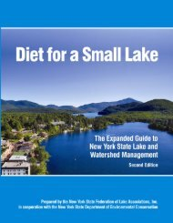 Diet for a Small Lake - New York State Department of Environmental ...