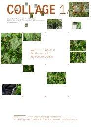 Gemüse in der Grossstadt / Agriculture urbaine - FSU