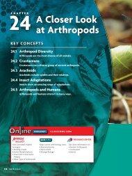 24 A Closer Look at Arthropods