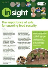 Why are soils important? - Global Food Security