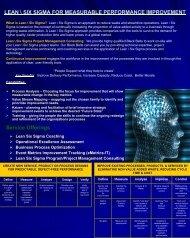 Lean / Six Sigma - MTT Associates