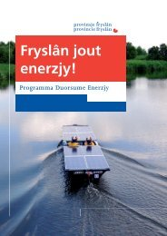 Brochure programma Duurzame Energie.pdf - Provincie Fryslân