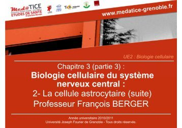 Professeur François BERGER Biologie cellulaire du système ...