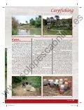 II Campeonato social - Solopescaonline.es - Page 7