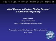 Algal Blooms in Eastern Florida Bay and Southern Biscayne Bay