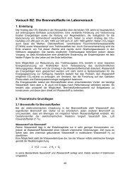 Versuch BZ: Die Brennstoffzelle im Laborversuch - Institut für ...