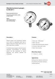 Standard pressure gauges to EN 837-1 - Racioterm
