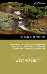 wv division of forestry - West Virginia Department of Commerce