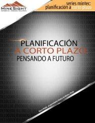 Planificación a corto plazo - Mintec, Inc.