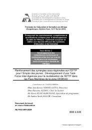 Renforcement des synergies sous-régionales sur l'EFTP ... - ADEA