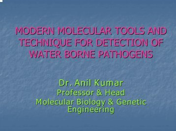 Modern molecular tools and technique for detection of water borne ...