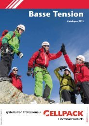 Catalogue Basse Tension 2013 - Cellpack Electrical Products