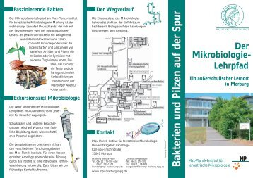 Flyer Mikrobiologie-Lehrpfad - Max Planck Institute for Terrestrial ...