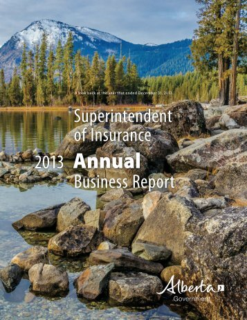 2013-Superintendent-of-Insurance-Annual-Report