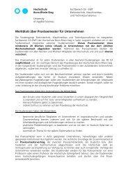 Merkblatt über Praxissemester für Unternehmen - Fachbereich ...