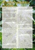 SCHERING (Euphorbiaceae #10) (Page 1) - LAP - Universitat ... - Page 2