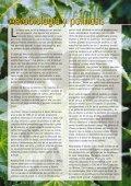 SCHERING (Euphorbiaceae #10) (Page 1) - LAP - Universitat ... - Page 4