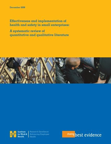 Effectiveness and implementation of health and safety programs in ...