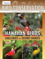 ChalleNGeS and SeCOND ChaNCeS - American Bird Conservancy