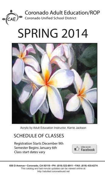 Download the Spring 2014 Course Catalog - Coronado Adult ...
